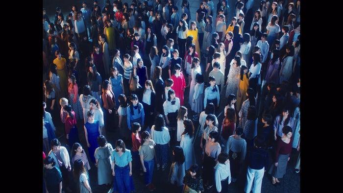 乃木坂46/「夜明けまで強がらなくてもいい」MVより(提供写真)