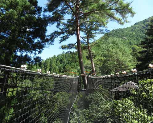 大自然にある秘密基地!奈良の山奥にある「子どもと行きたい」おでかけスポット
