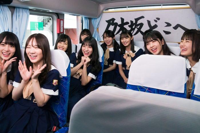 「乃木坂どこへ」より(C)日本テレビ