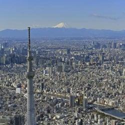 東京、新たに316人が感染 コロナ、累計11万2345人