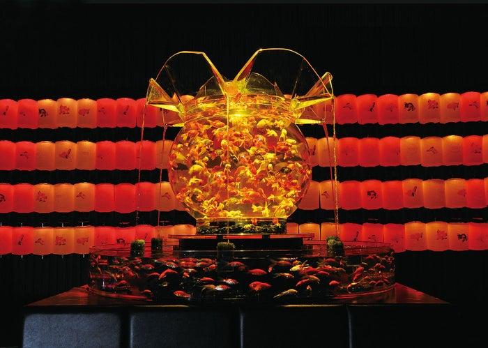 東京会場展示予定作品「花魁」/画像提供:アートアクアリウム実行委員会