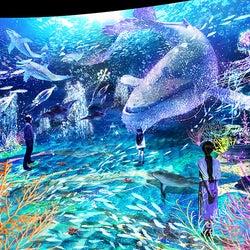 「OCEAN BY NAKED 光の深海展」日本初上陸、極彩色の深海の世界へ