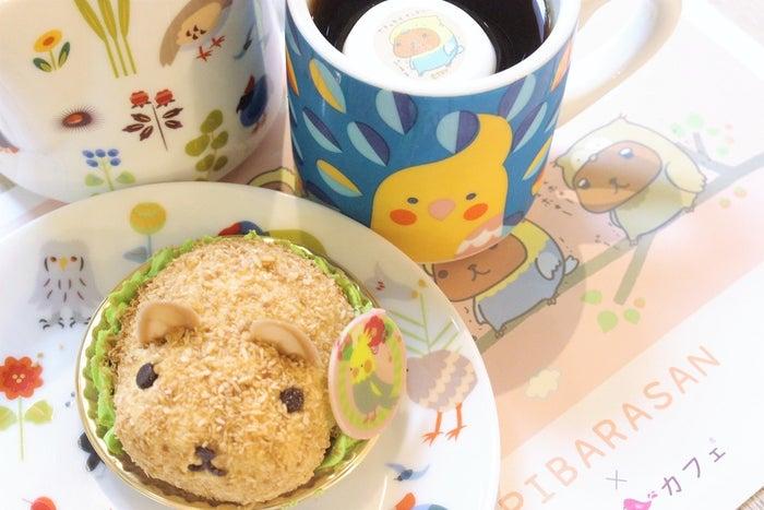 小鳥チョコ付カピバラさんケーキセット(カピバラさんマシュマロ付ドリンク&特製ランチョンマット付)税別¥1,600/画像提供:ことりカフェ