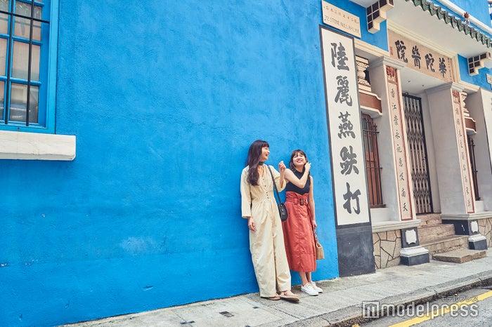 清々しく鮮やかな青壁。ここを背景に写真を撮るだけで絵になる (C)モデルプレス