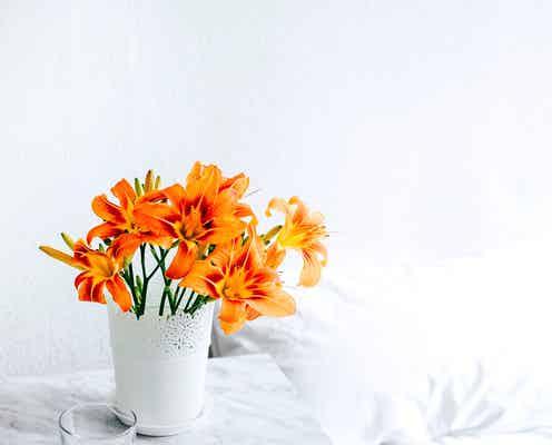 「お花のある暮らし」初めてみませんか?初心者さんも◎な楽しみ方と飾り方アイデア