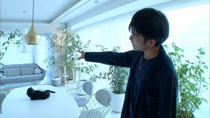 DaiGo (画像提供:テレビ朝日)