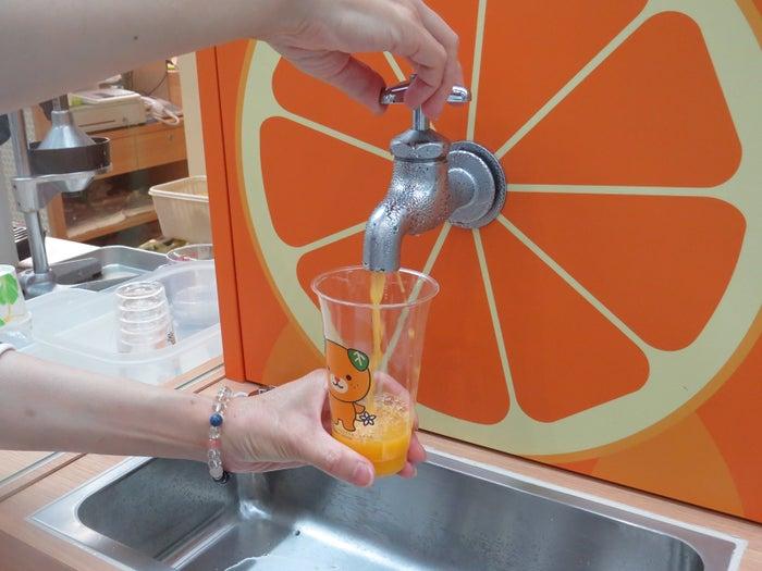 蛇口からみかんジュース!?「Orange BAR」松山空港に誕生/画像提供:松山空港ビル株式会社