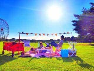 【北関東最高峰!】国営ひたち海浜公園は最高のピクニックスポットだった