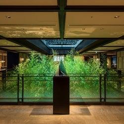 憧れのスイートルーム30泊が100万円! 京都の美空間ホテルで、洗濯サービスや食事券もついた特典満載のおこもりステイを