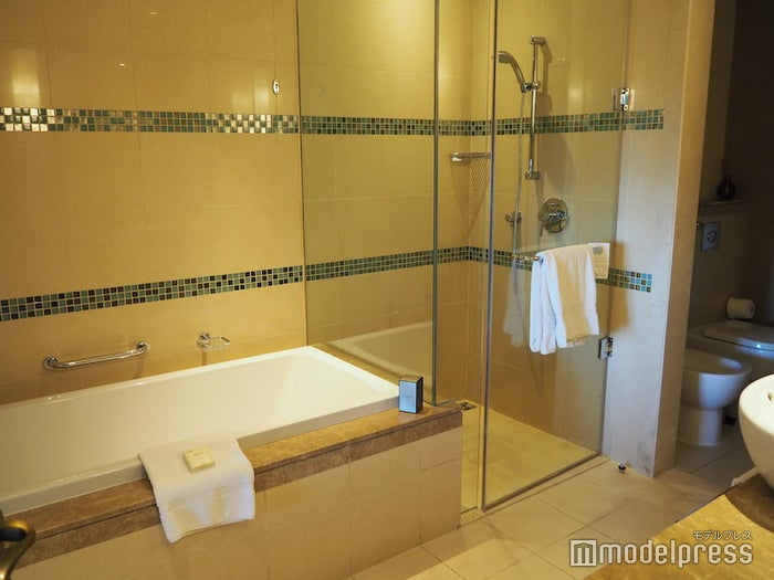 広々としたバスルームは浴槽とシャワー室が両方完備されている(C)モデルプレス
