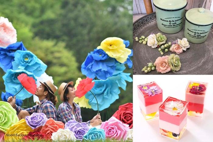 大きな花に囲まれたインスタ映えスポットに女子殺到!妖精気分を体験