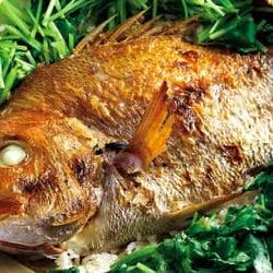 鯛も筍もいまの時期が最も旨い! 旬の食材を美味しく食べさせてくれる和食店4選