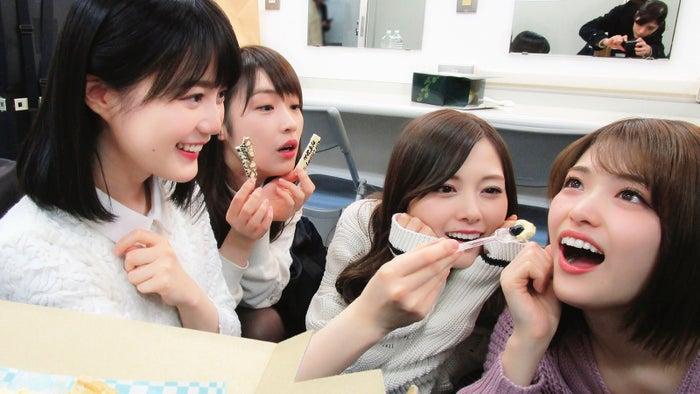 (左から)生田絵梨花、高山一実、白石麻衣、松村沙友理(撮影:若月佑美/提供写真)