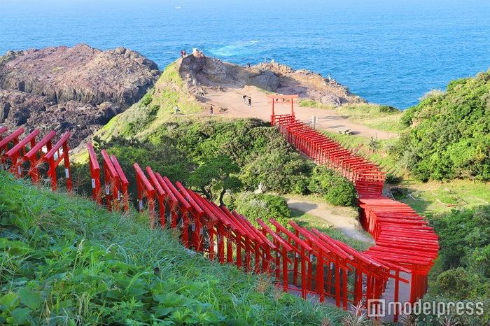 コバルトブルーの日本海と朱色の鳥居のコントラストはここならではの絶景(C)モデルプレス
