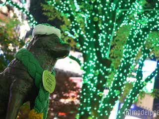 渋谷ハチ公前が緑に染まる 世界が注目「FAMM'IN」の渋谷音楽でXmas幕開け