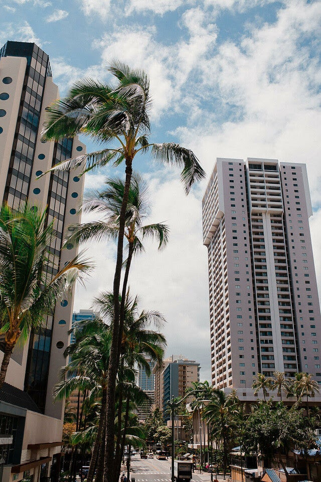 星野リゾート サーフジャック ハワイ/画像提供:星野リゾート