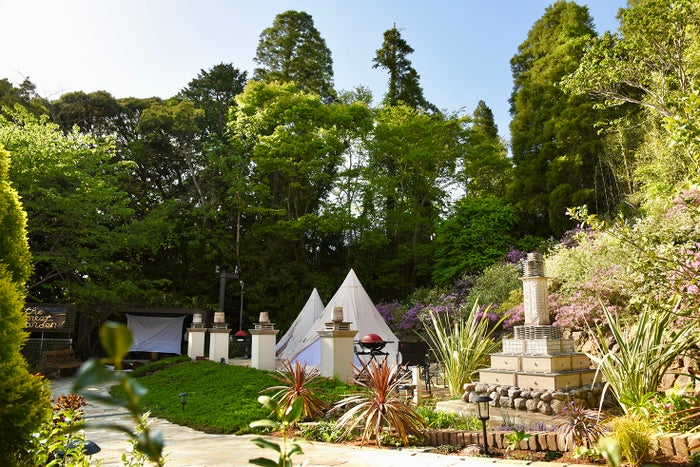 The Forest Garden KIMINOMORI/画像提供:inter-wave