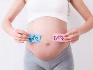 本当?迷信?赤ちゃんの性別にまつわるジンクスを個人的に検証してみた!