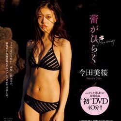 今田美桜DVD(提供画像)