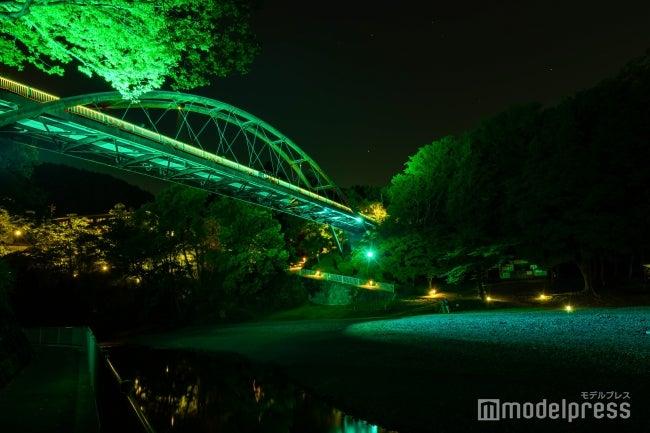 北欧をイメージするカラーに期間限定ライトアップ/画像提供:飯能市