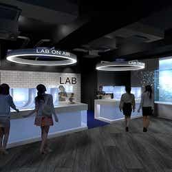 クラゲの繁殖過程を観察できる水槽展示(イメージ)/画像提供:京都水族館