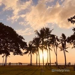 ハワイ州、陰性証明書提示で14日間隔離免除へ 日本からの旅行者が対象