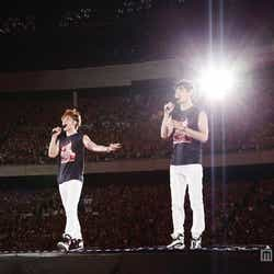 「東方神起 LIVE TOUR 2013~TIME~FINAL in NISSAN STADIUM」