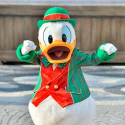 ドナルドダック/東京ディズニーシー「ミッキー&フレンズのハーバーグリーティング」コスチュームのイメージ(C)Disney