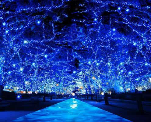 人気イルミネーション「青の洞窟」が2年ぶりに渋谷で復活