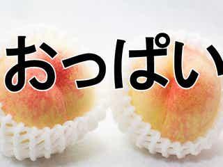 【おっぱい】巨乳!ボイン!スイカップ!日本は「豊かな胸」を表す言葉が豊富過ぎる