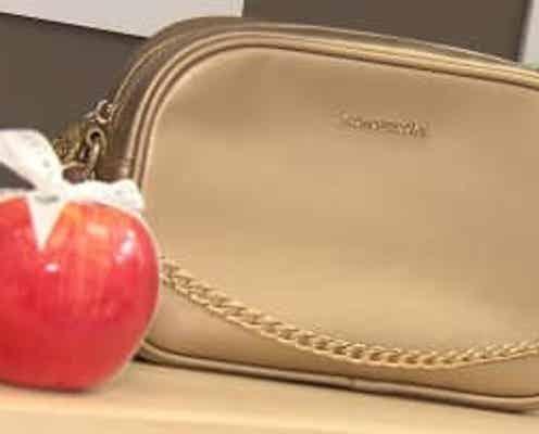 リンゴからバッグ「ビーガンレザー」を活用 展示会に初出展