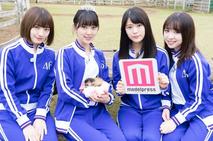 (左から)中田花奈、堀未央奈、岩本蓮加、渡辺みり愛(C)「NOGIBINGO!10」製作委員会