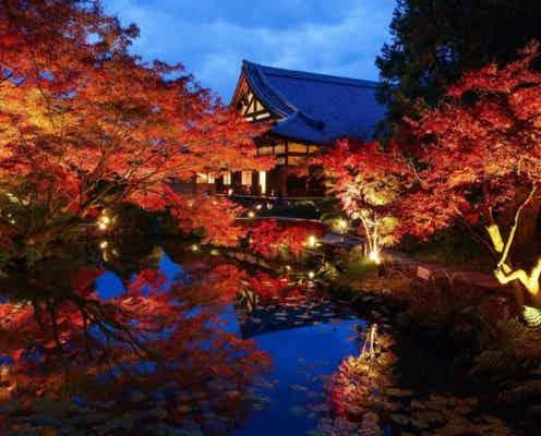 【関西・中国】夜間ライトアップや宿泊も♡秋旅におすすめ「紅葉名所」5選