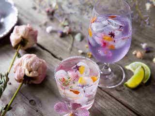 花ごと味わう「フラワーカクテル」って知ってる? フラワーとスパイスを丸ごと楽しむ注目の『ハナバー』