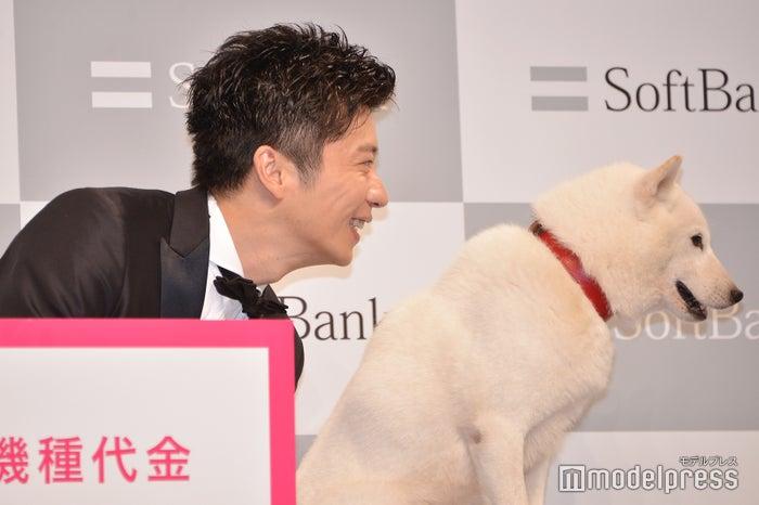 カメラを見ない白戸家のお父さんに「お父さん!」と呼び続ける田中圭(C)モデルプレス