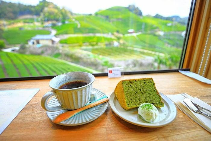 dan dan cafeの抹茶シフォンケーキ/画像提供:dan dan cafe