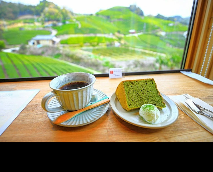 京都和束の茶畑カフェ「dan dan cafe」はSNSで自慢したくなる穴場スポット