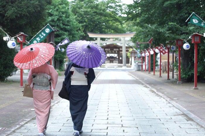 本場結城紬の着物でお参りしよう/小山市