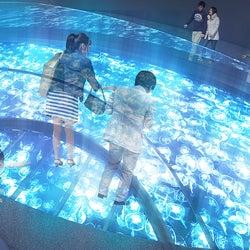 すみだ水族館、開業後初の大規模リニューアル クラゲを真上から見下ろす新展示が誕生