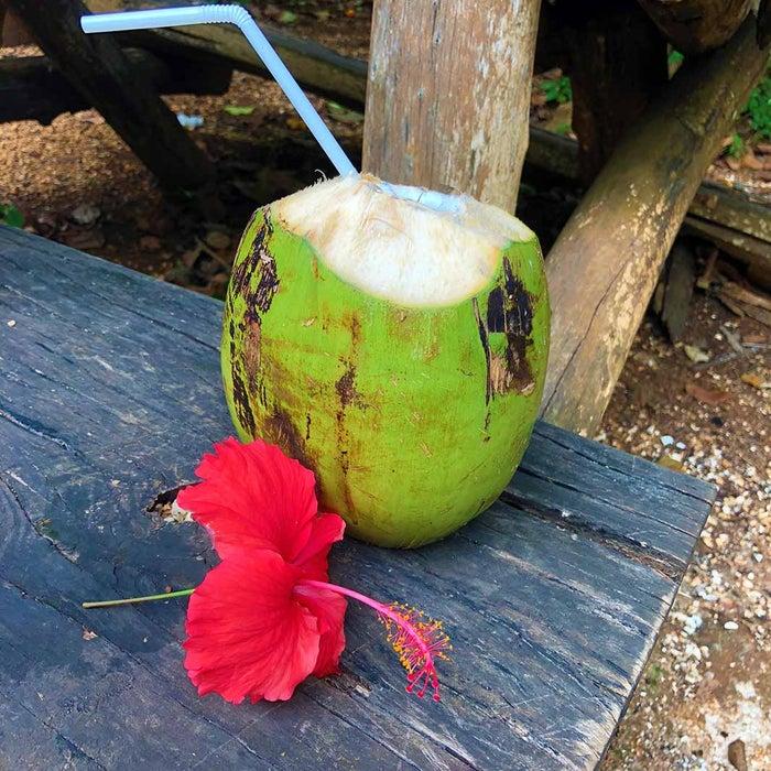 その場で飲み口をカットしてくれるココナッツジュース(C)Marianas Trekking