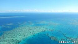 NEWSの手越祐也・宮川大輔・みやぞん『イッテQ!』新企画でオーストラリアで遠泳