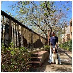 モデルプレス - 木村拓哉の次女・Koki,(コウキ)、愛犬と散歩「絵になる」「外国みたい」と反響 脚の長さにも注目集まる