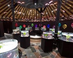 水中楽園アクアリウム/画像提供:御殿場高原ビール