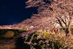 """""""世界で最も注目を集める旅行先""""日本が初受賞、有名旅行誌が発表"""