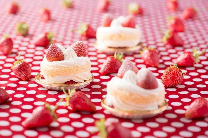 とちおとめのまーるいショートケーキ各¥650/画像提供:株式会社 横浜赤レンガ