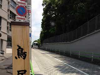 """乃木坂46、新グループ発表 """"坂道シリーズ""""第2弾が決定"""