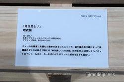 「命は美しい」衣装説明/「乃木坂46 Artworks だいたいぜんぶ展」(C)モデルプレス